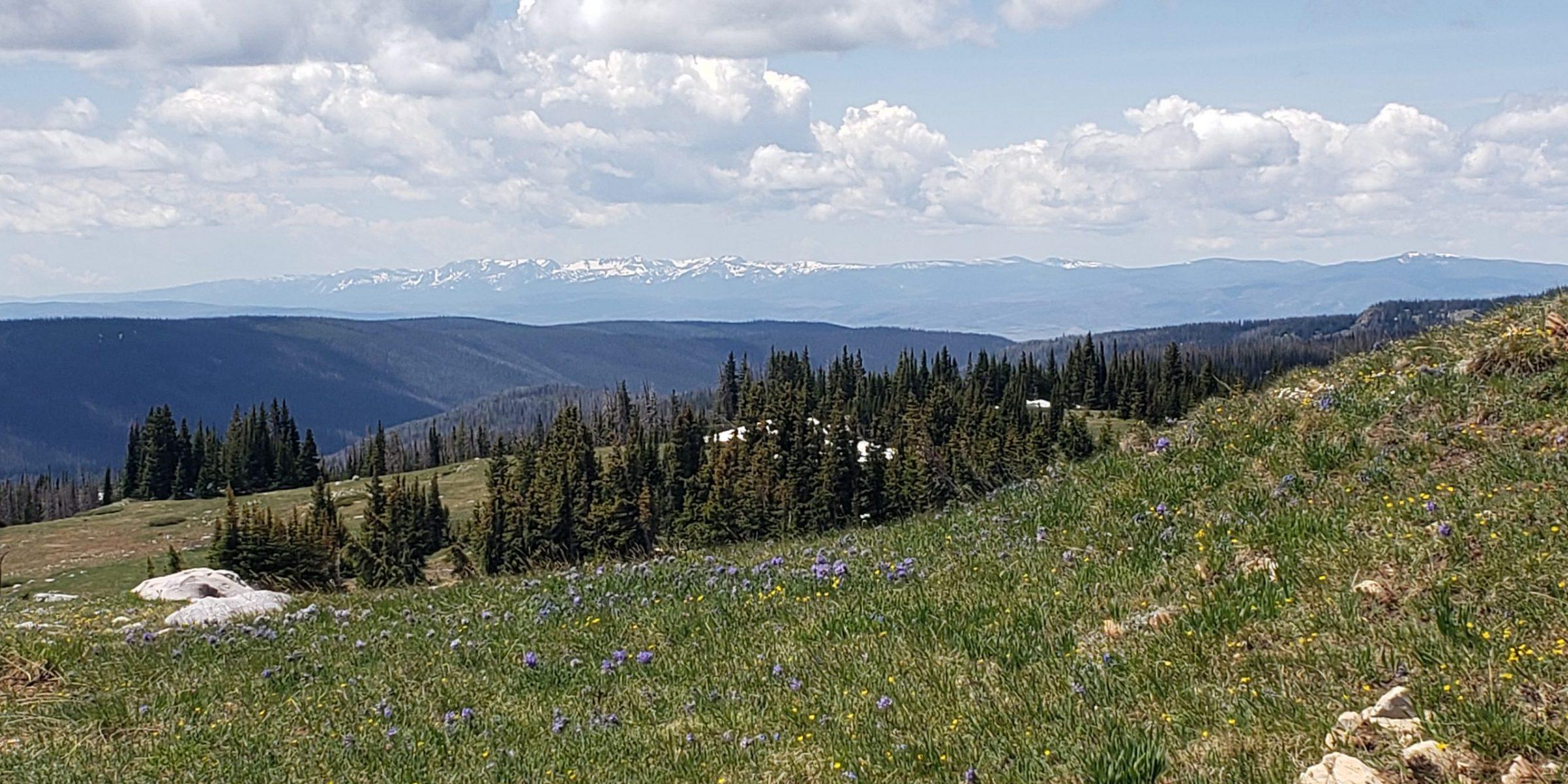 Southern Rockies Seed Network